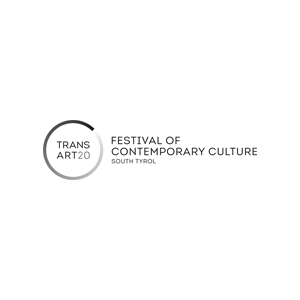 Logo Transart 30x30